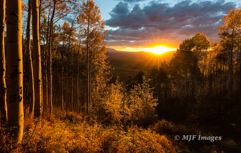Golden light floods into a grove of quaking aspen in Colorado's Cimarron Mountains. I love this one because while the sky is not overly colorful, simple sunlight collecting on a hillside of aspen can turn your whole world golden.