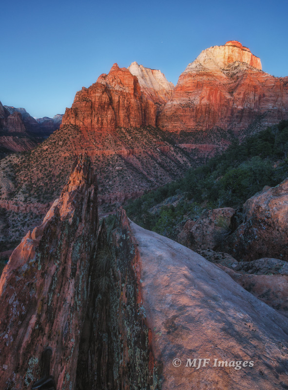 View up Zion Canyon at dusk.