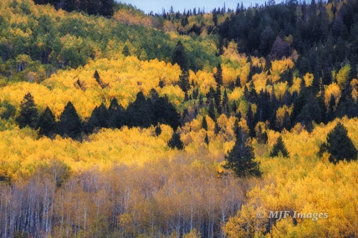The Colorado Rockies.
