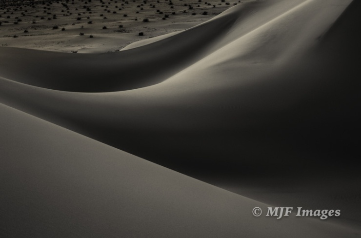 Line and pattern: Ibex Dunes, Death Valley N.P.