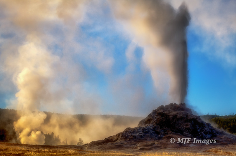 Yellowstone's most famous features are caught erupting on a cold morning in Lower Geyser Basin.