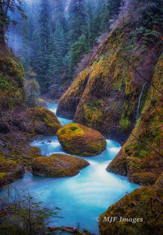 A winter ev ening in the rain along Eagle Creek, Oregon.