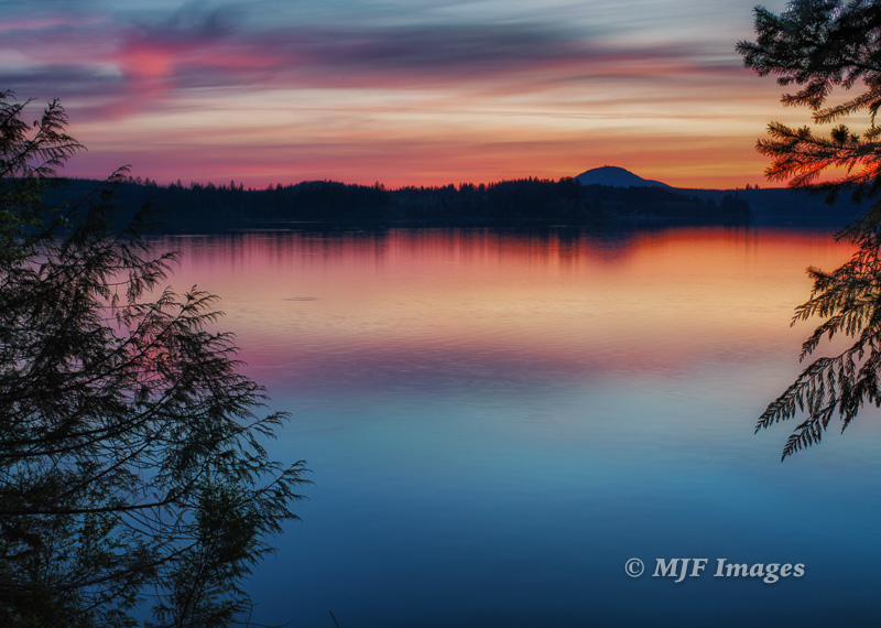 Recent sunset on beautiful Lake Quinault, Olympic Peninsula, Washington. The cedar trees a a framing foreground element.