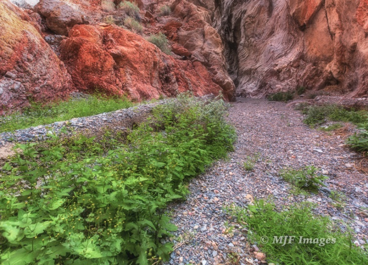 Entrance to the narrows at Red Wall Canyon, Death Valley National Park, California.
