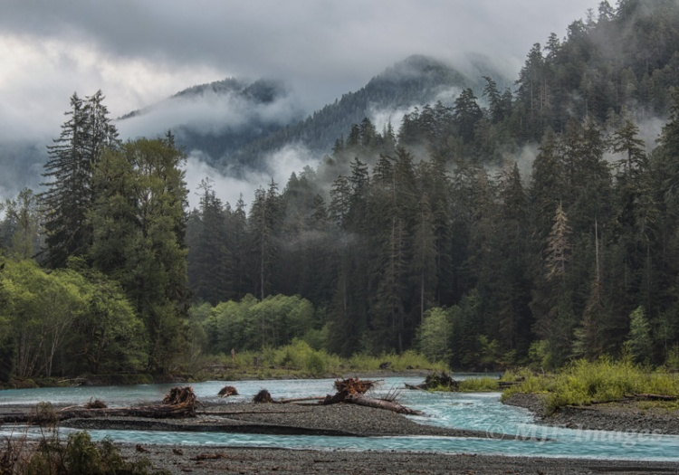 The Hoh River and Olympic mountains, cloaked in rainforest.  106 mm., 0.4 sec. @ f/13, ISO 50.
