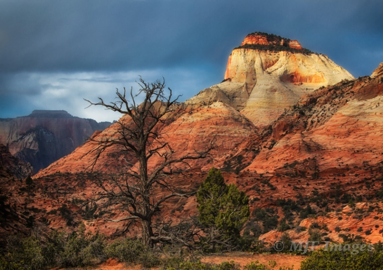 I'd been wanting to capture the Temple Cap Formation of Zion National Park so I went around visualizing it.  This vantage point shows it perched atop the East Temple.