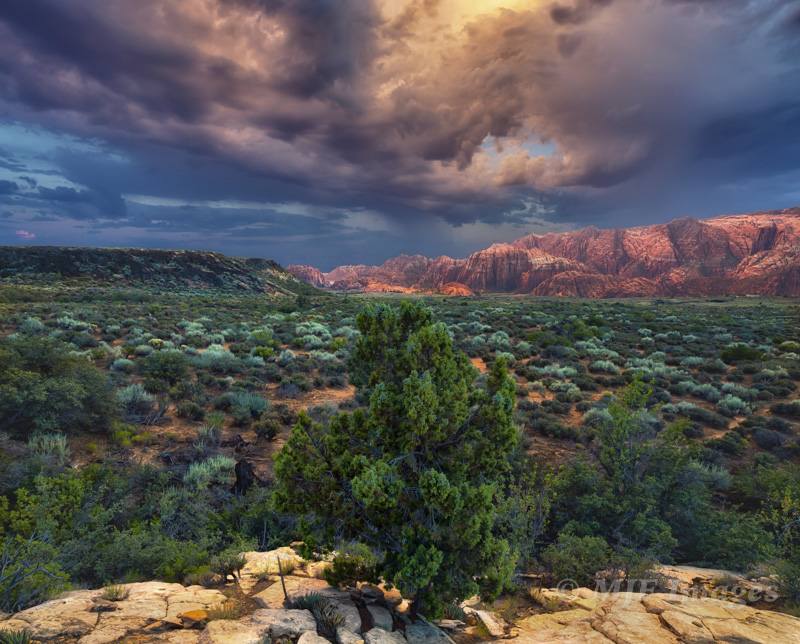 When stormy weather moved in at Snow Canyon, Utah, my images and then, later, the processing reflected that.