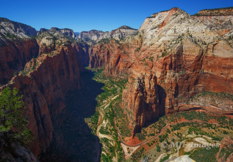 A very minimally edited image taken mid-day from the top of Angel's Rest, showing a bird's-eye view of Zion Canyon, Utah.