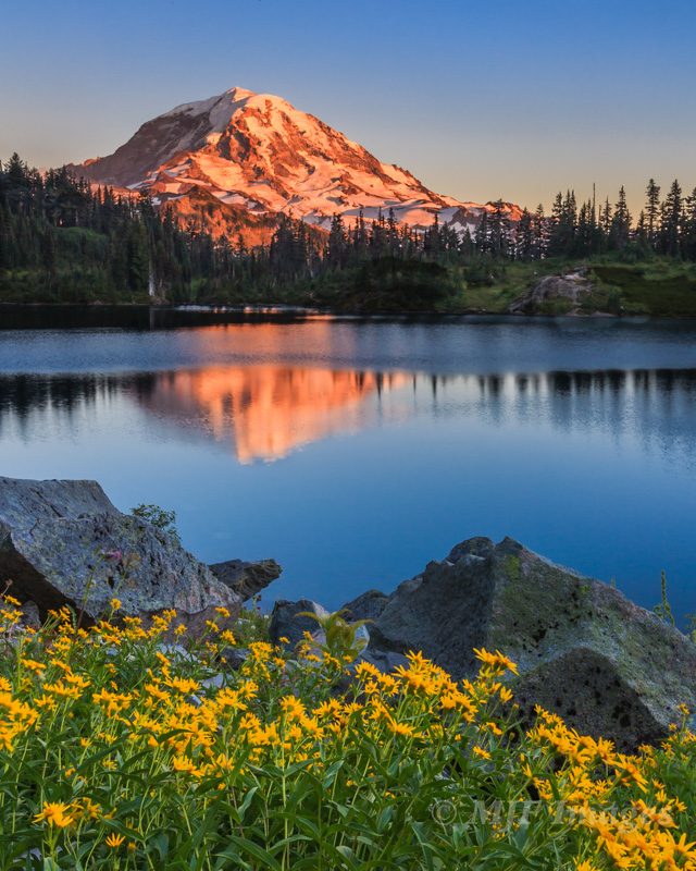 Mount Rainier from Eunice Lake, an image I had pre-visualized, though I did not know about the flowers until I hiked up there.