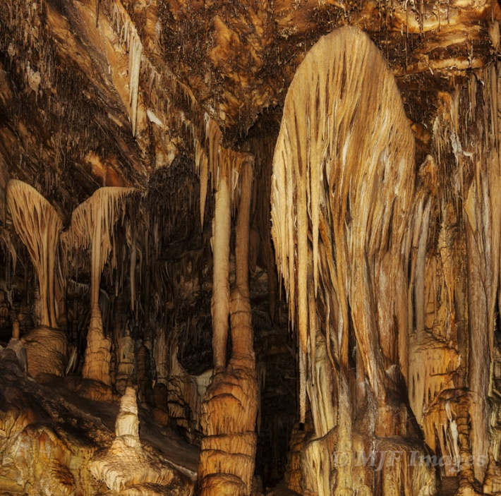So-called cave shields in Lehman Caves, Great Basin NP, Nevada.