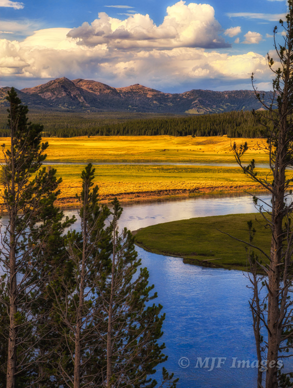 The Yellowstone River meanders through Hayden Valley. While the road through here is very busy, you can hike short distances cross-country for different views.