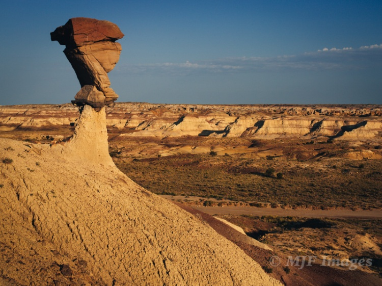 A hoodoo in Bisti/De Na Zi wilderness, New Mexico.  What does it look like to you?