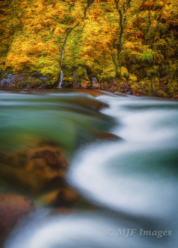 Because of a somewhat dangerous position, I only had time for two versions of this spring along Oregon's Hood River. This vertical has the longer exposure time. 28 mm., 6 sec. @ f/11, ISO 50.